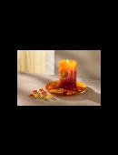 Kerzen Set Fruit 3 tlg. mit Teller Kerze Kerzenteller Tischdekoration Duftkerze Herbst Winter NEU